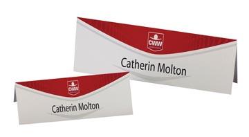 AVERY Cartes de nom imprimables 20 feuilles, 40 pièces (ft 180 x 60 mm)